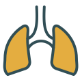 Symptom icon